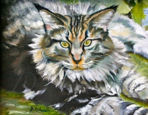 Maine Coon Cat- Oil on Linen - 14 x 11 - 2010