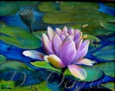Water Lilly - Oil on Canvas - 10 x 8  2003