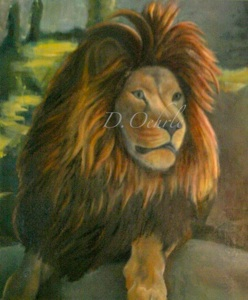 Franklin Park Zoo Lion oil on canvas 20x24 2009