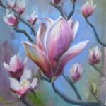 magnoliastellata-150x150