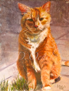 Tabby Cat - Oil on linen 10 x 12 2010  SOLD