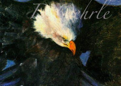 American Bald Egale oil on board 20x12 2009